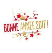 BONNE ANNÉE A TOUS !!